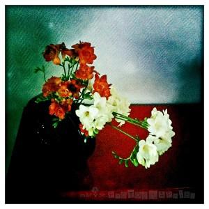 photo (5)-3